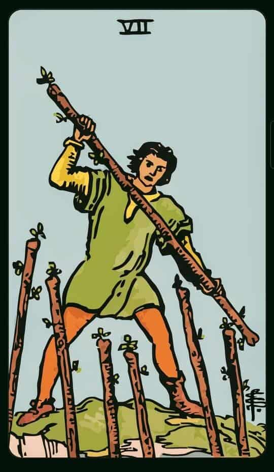 SEVEN Of WANDS : 7 ไม้เท้า